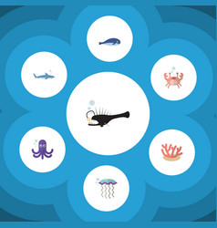 Flat icon marine set of cachalot medusa cancer vector