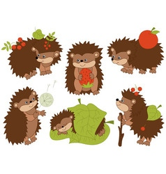 Hedgehog Set vector image