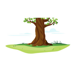 Oak tree trunk on meadow isolated vector