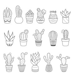 Set of 16 cactuses and succulents in flower pots vector
