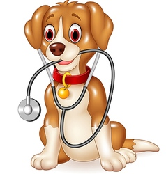 Cartoon funny dog sitting with stethoscope vector image