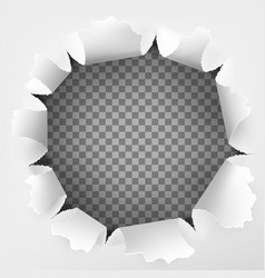 torn hole and ripped of paper on a transparent vector image