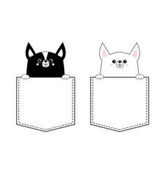 Black white corgi dog set face head icon in the vector