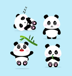 cute panda cartoon set concept vector image