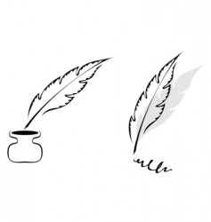 feathers design vector image