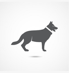 german shepherd icon vector image