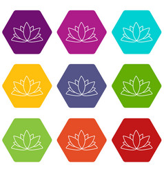 lotus flower icons set 9 vector image