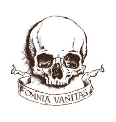 skull and banner - all is vanity vector image