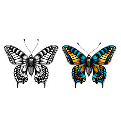 Two butterflies kids coloring page vector