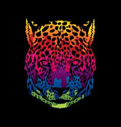 Cheetah face tiger head front view face vector