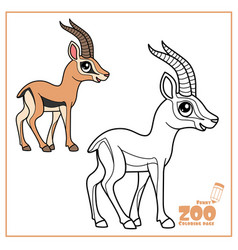 cute cartoon little gazelle color and outlined on vector image