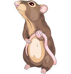 Cute mice vector