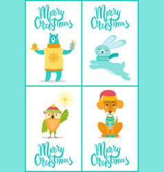 merry christmas bear and owl vector image