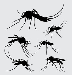 Mosquito insect animal silhouette vector