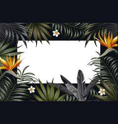 night tropical frame banner flowers leaves vector image