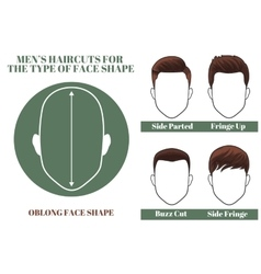 oblong face shape vector image