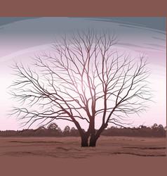tree landscape oak without vector image