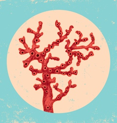 Coral vintage vector image vector image