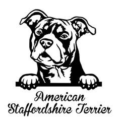 American staffordshire terrier peeking dog - head vector