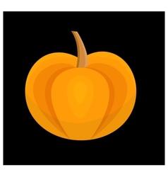 Contrast pumpkin vector image