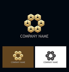 cube connect gold geometry logo vector image