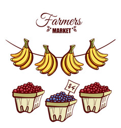 Farmers market bananas berries vector