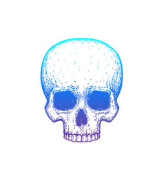 human skull with gradient vector image