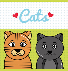 pet cat and dog vector image