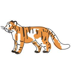 Sketchy inked tiger big cat vector