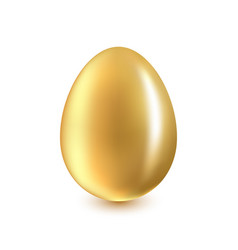 golden egg on a white background vector image