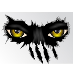 eyes look vector image vector image