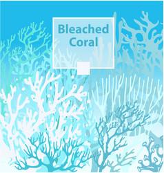Coral bleaching occurs rising sea temperatures vector