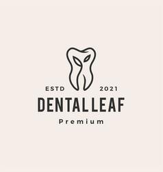 dental leaf hipster vintage logo icon vector image