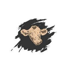 Head cow with abstract background vector