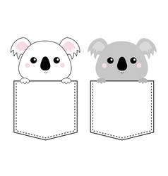 koala bear head face in pocket holding paw vector image