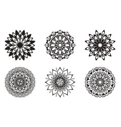 set floral patterns black color vector image