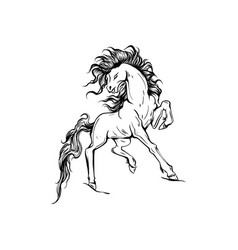 silhouette a running horse vector image