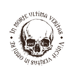 skull with a latin inscription vector image