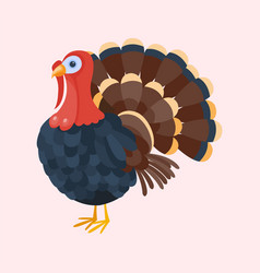 turkey bird isolated thanksgiving nature farm vector image