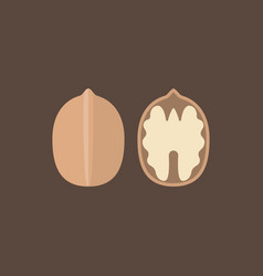 Walnut icons set vector
