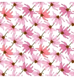 Hand drawn seamless pattern with echinacea flowers vector image vector image