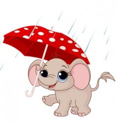 cute baby elephant under umbrella vector image
