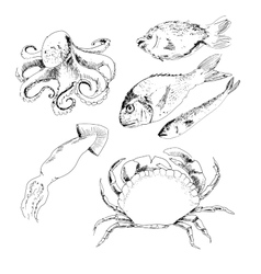 Seafood vector image vector image