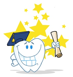 Successful Graduate Tooth Holding A Diploma vector image