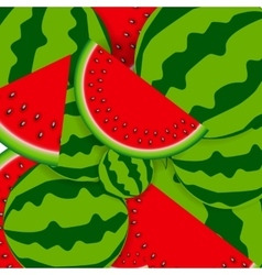 Background From Watermelon vector image