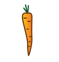 carrot linear thin line icon vector image