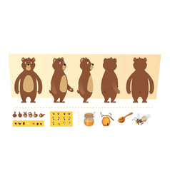 Cartoon bear animation cute wild animal body vector