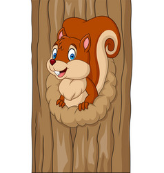 cartoon squirrel in the tree hole vector image