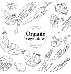 Healthy and fresh Vegetables Organic background vector image