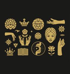 magic and mystic design elements set vector image